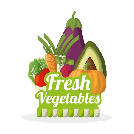 신선한 야채 영양 식품 이미지 일러스트