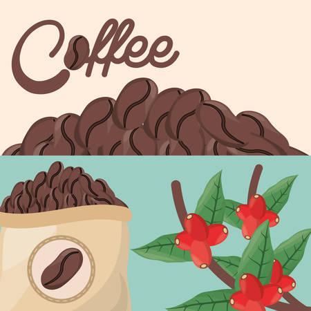 coffee beans tree sac fresh vector illustration eps 10 Illustration