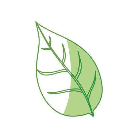 turismo ecologico: Leaf ecology symbol icon vector illustration graphic design