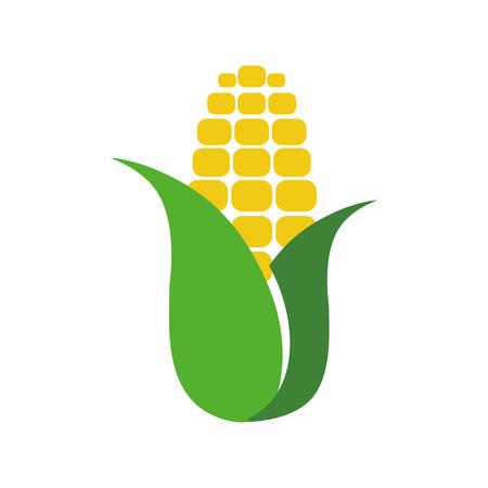 Corn food symbol icon vector illustration graphic design