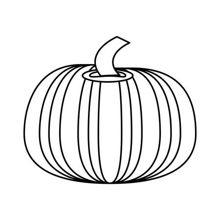 health and fitness: Fresh pumpkin vegetable icon vector illustration graphic design