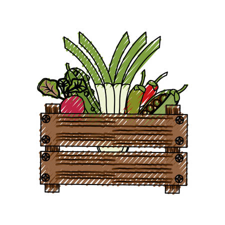 Vegetables in wooden box icon vector illustration graphic design