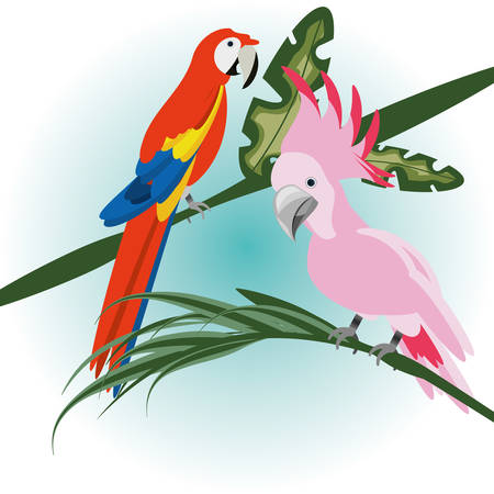 beautiful guacamaya and cockatoo over tropical palms, vector illustration Vectores