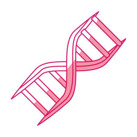 DNA human symbol icon vector illustration graphic design Illustration