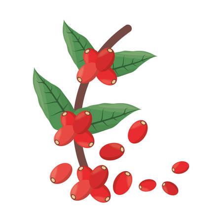 Beans of fresh coffee icon vector illustration graphic design Illustration