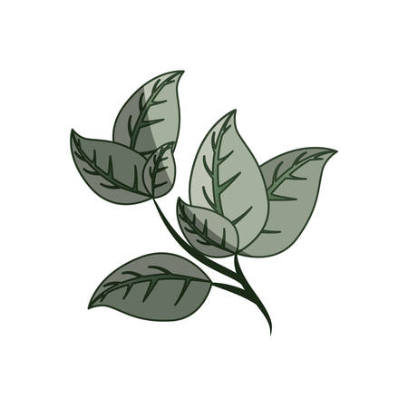 Leaves ecology symbol icon vector illustration graphic design