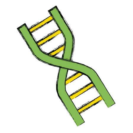 Adn icono de código genético ilustración vectorial diseño gráfico.
