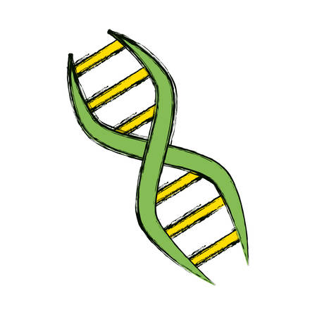 Adn genetic code icon vector illustration graphic design.