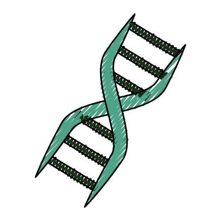 Adn genetische code icoon vector illustratie grafisch ontwerp Stock Illustratie