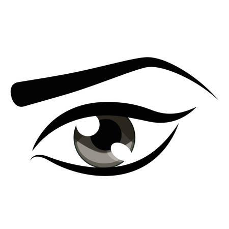 Womans ojo y eyebrown icono sobre fondo blanco colorido diseño ilustración vectorial Foto de archivo - 79804295