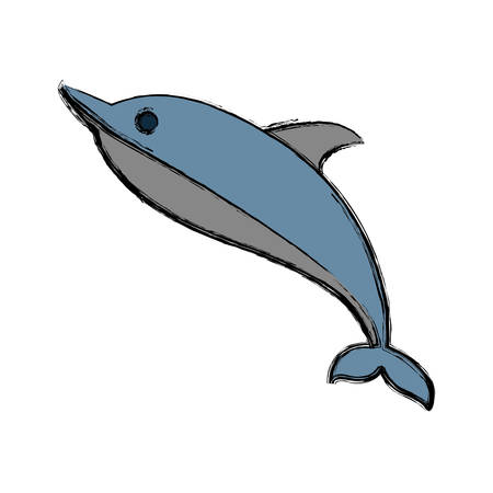 dolphin icon over white background vector illustration