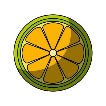 lemon slice citrus icon vector illustration graphic design Illustration