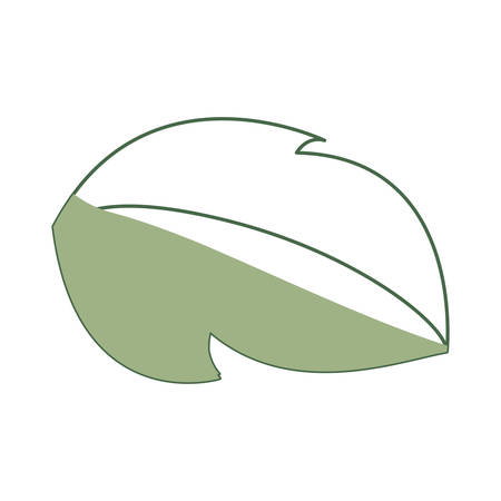 advice: Leaf ecology symbol icon vector illustration graphic design