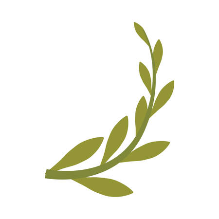Branch olive cartoon icon vector illustration graphic design