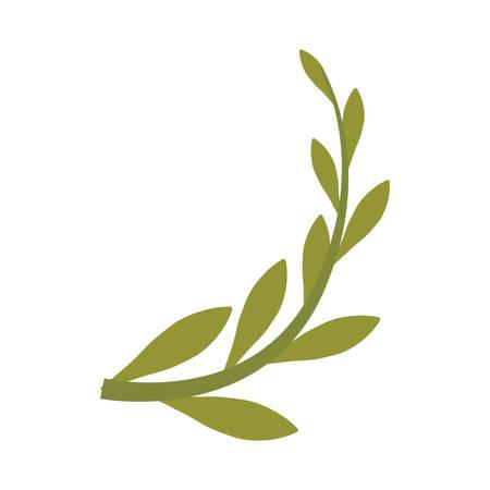 Branch olive cartoon icon vector illustration graphic design