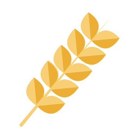 wheat ears icon over white background vector illustration