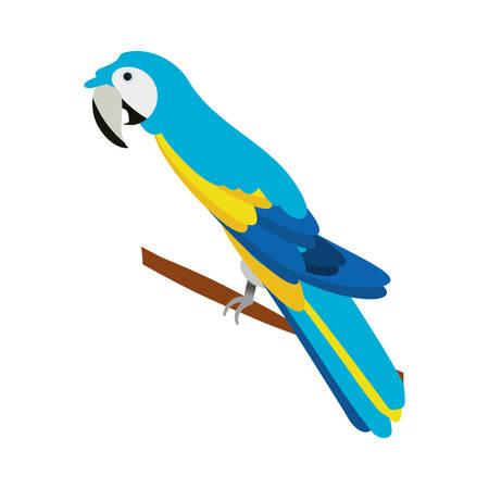 isolated cute blue guacamaya icon vector illustration graphic design Vectores
