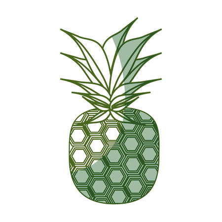 isolated pineapple fruit icon vector illustration graphic design