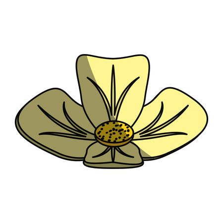 fragrances: Spa flower isolated icon vector illustration graphic design