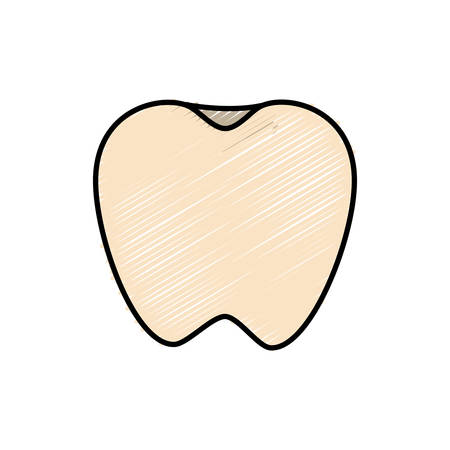 A tooth icon over white background vector illustration.