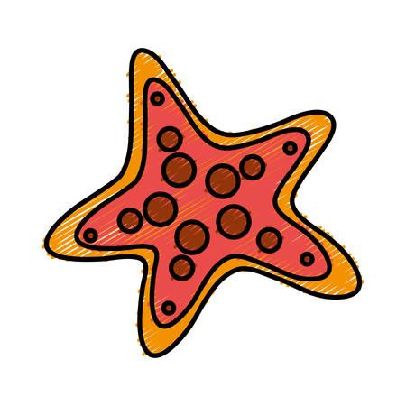 A sea star icon over white background vector illustration. Illustration