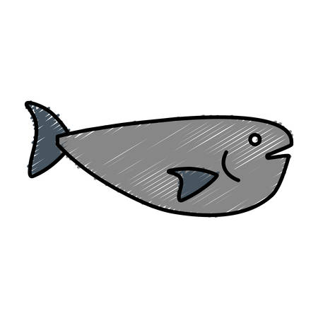 Fish icon over white background vector illustration