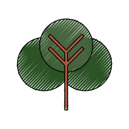 tree nature symbol icon vector illustration graphic design