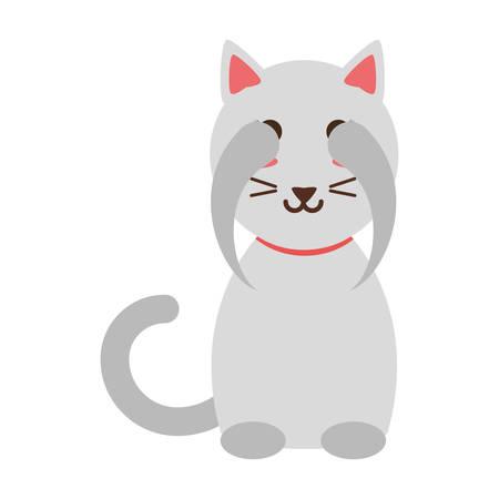 talisman: Cute cat cartoon over white background icon
