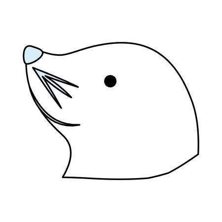Sea lion cartoon over white background graphic design