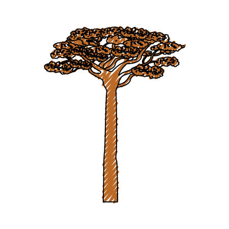 continente africano: African tree isolated icon vector illustration graphic design Vectores