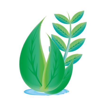 turismo ecologico: Hojas símbolo de la ecología sobre fondo blanco icono ilustración vectorial