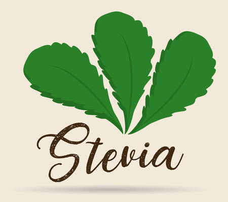 stevia plant icon over white background colorful design vector illustration