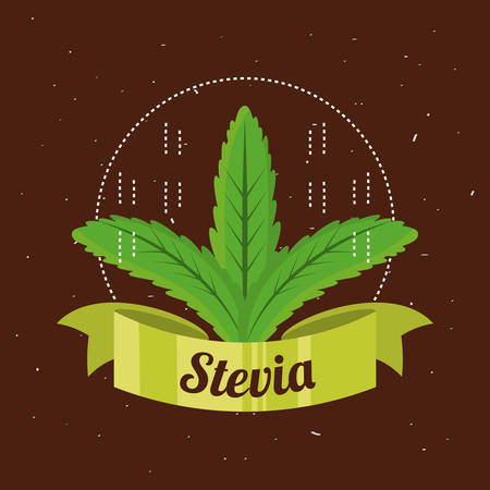stevia natural sweetener plant and organic product vector illustration