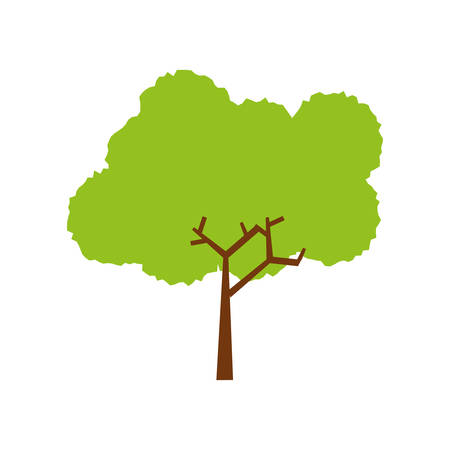 green environment: Tree nature ecology icon vector illustration graphic design