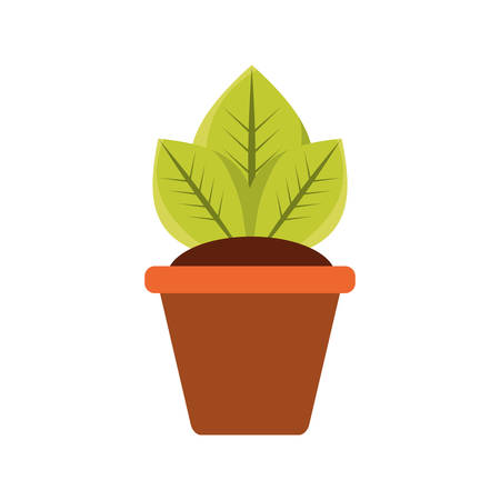 Plant in pot icon vector illustration graphic design