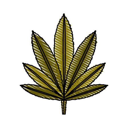 colorful  leaf marijuana over white  background vector illustration