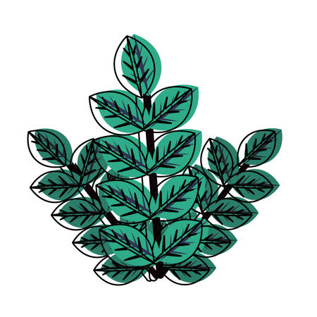 flat line colored bouquet leaves over white background  vector illustration