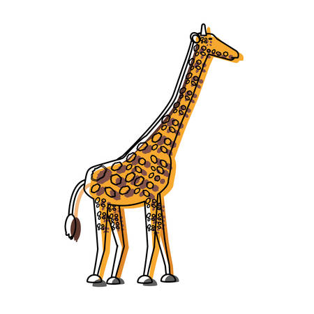 giraffe icon over white background vector illutration