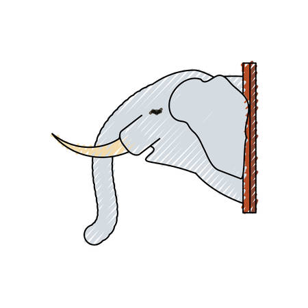 colored  animal trophy over elephant doodle   white background  vector illustration
