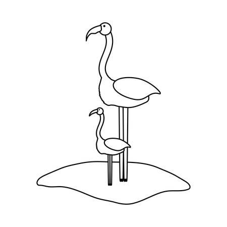 flat line uncolored  flamingo over white background  vector illustration Illustration