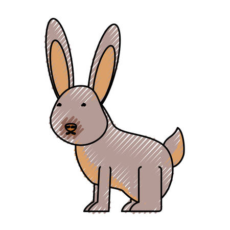 flat line colored  wild rabbit over white background  vector illustration