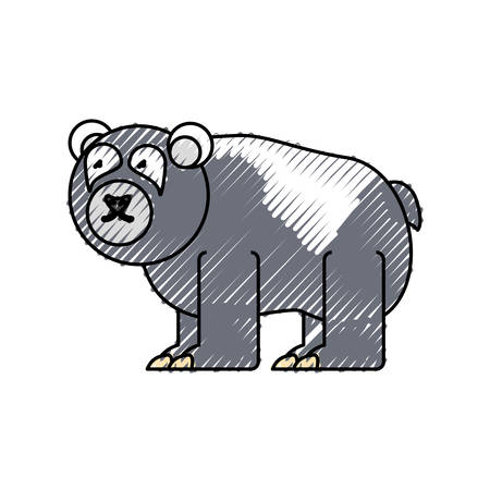 flat line colored  bear doodle  over white background  vector illustration Illustration
