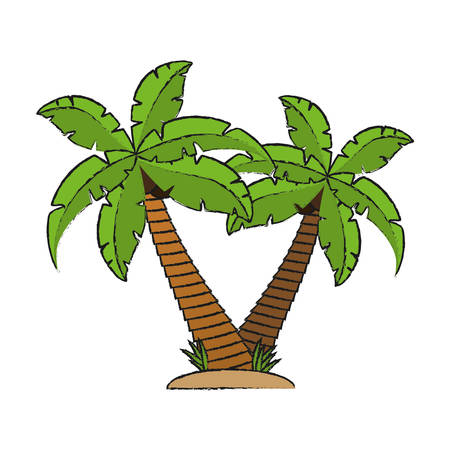 tropical palms icon over white background vector illustration