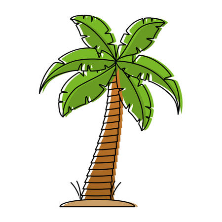 tropical palm icon over white background vecotr illustration