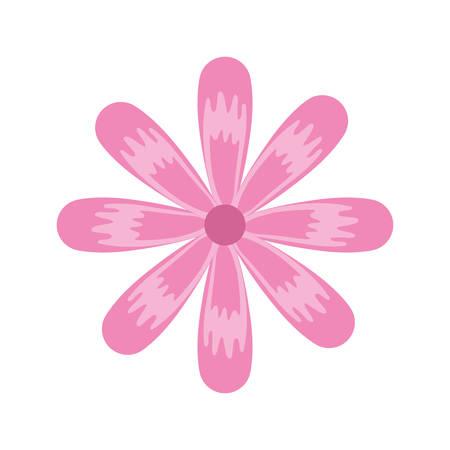 colorful flower  over white background vector illustration