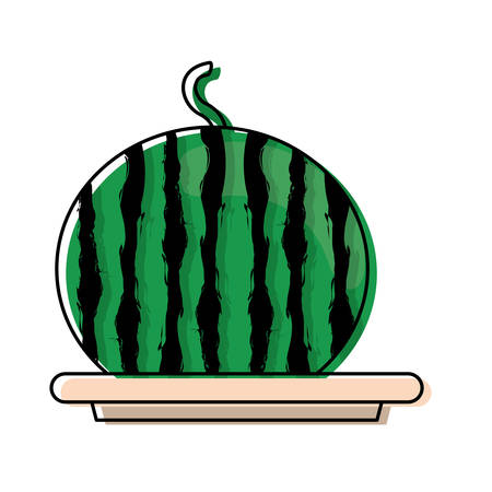 colored  plate with  watermelon over white background vector illustration