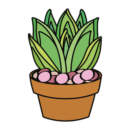 agave succulent in a pot icon over white background colorful design vector illustration