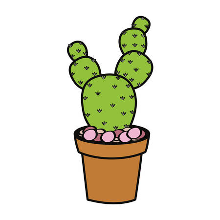 paddle cactus in a pot icon over white background colorful design vector illustration
