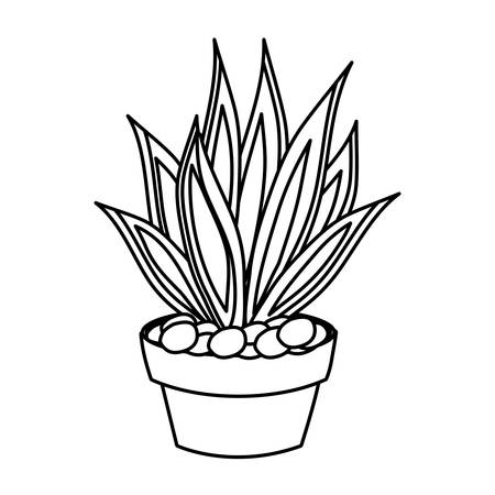 agave succulent in a pot icon over white background vector illustration Illustration
