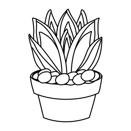 agave succulent in a pot icon over white background vector illustration 向量圖像